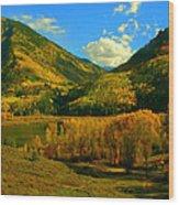 Marble Valley Wood Print