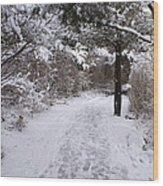Marginal Way in Winter 2 Wood Print
