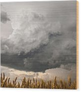 Marshmallow - Bubbling Storm Cloud Over Wheat In Kansas Wood Print