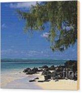 Mauritius Blue Sea Wood Print
