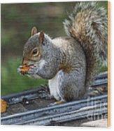 Meals On Rails Wood Print