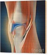 Medical Illustration Showing Wood Print