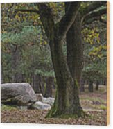 Megalithic Tombe Wood Print by Frits Selier
