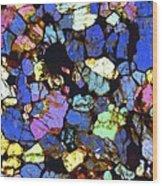 Meteorite Nwa 6435, Light Micrograph Wood Print