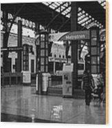 metrotren platforms in Santiago central railway station Chile Wood Print