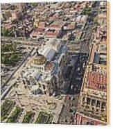 Mexico City Aerial View Wood Print