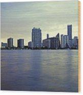 Miami Downtown Wood Print
