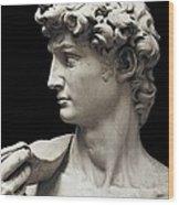 Michelangelo 1475-1564. David Wood Print by Everett