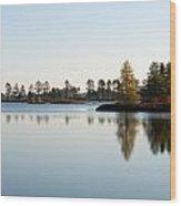 Michigan Wetland Wood Print