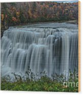 Middle Falls At Letchworth State Park Wood Print