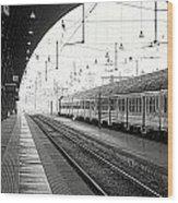 Milan Central Station Wood Print