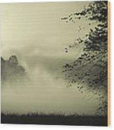 Misty Morning Wood Print by Cindy Rubin