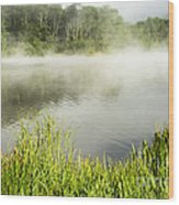Misty Summer Morning  Wood Print
