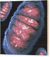 Mitochondria Wood Print