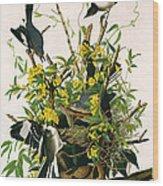 Mocking Birds And Rattlesnake Wood Print