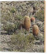 Mojave Desert Cactus Wood Print