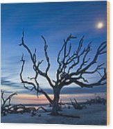 Moonshine Wood Print
