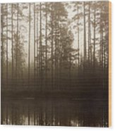 Morning At Pitkajarvi Wood Print