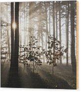 Morning Dream Wood Print
