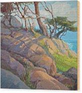 Morning Light At Point Lobos Wood Print