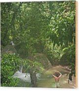 Mossman Gorge Daintree National Park Wood Print
