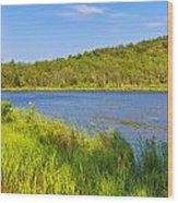 Mount Desert Island Wood Print