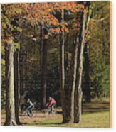 Mountain Bikers Ride In New Gloucester Wood Print
