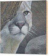 Mountain Lion Painterly Wood Print