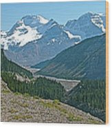 Mountain Peaks From Icefields Parkway-alberta Wood Print
