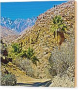 Mountain Peaks From Lower Palm Canyon Trail In Indian Canyons Near Palm Springs-california Wood Print