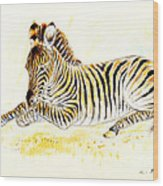 Mountain Zebra Wood Print
