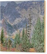 Mountains And Trees Wood Print