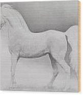 Moving Image Wood Print