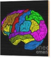 Mri Of Normal Brain Wood Print