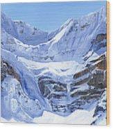 Mt Patterson Wood Print