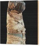 Mummified Dog From Ancient Egypt Wood Print