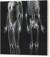 Muscles And Bones Wood Print