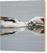 Muscovy Water Reflection Wood Print