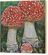 Mushrooms Wood Print