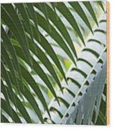Na Mele O Makani Aloha Hawaii Nei Wood Print
