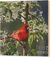 Red Cardinal In Flowers Wood Print