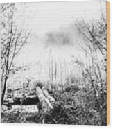 Natural Ice Fog  Wood Print