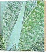 Natural Map Wood Print