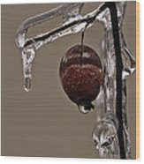 Nature's Candy Apple Wood Print by Tony Beck