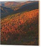 Nature's Color Palette Wood Print
