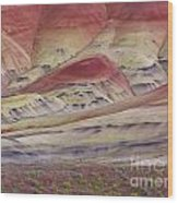 John Day Fossil Beds Painted Hills Wood Print