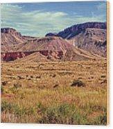 Navajo Nation Series Along 87 And 15 Wood Print