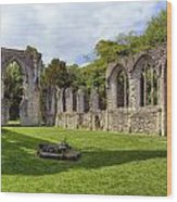 Netley Abbey Wood Print
