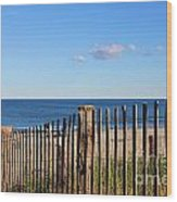 New England Beach Past A Fence Wood Print