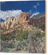 New Mexico Landscape Wood Print